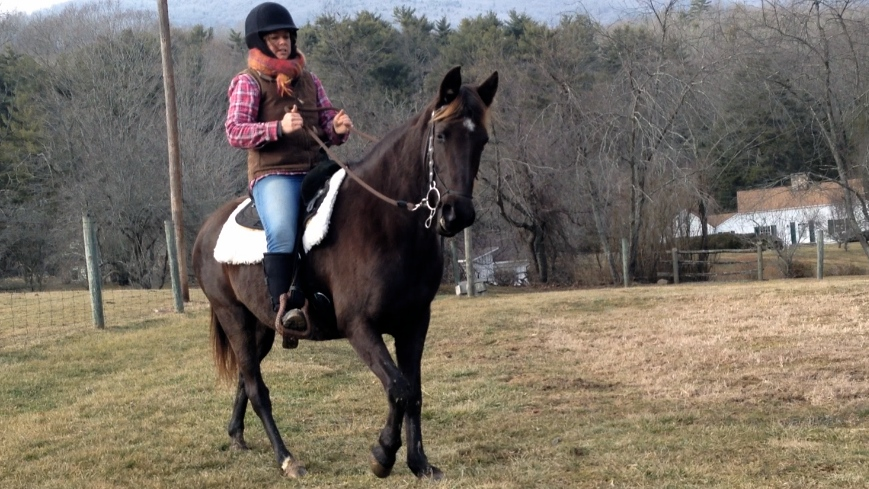 6 Imperatives for the RidingHorse
