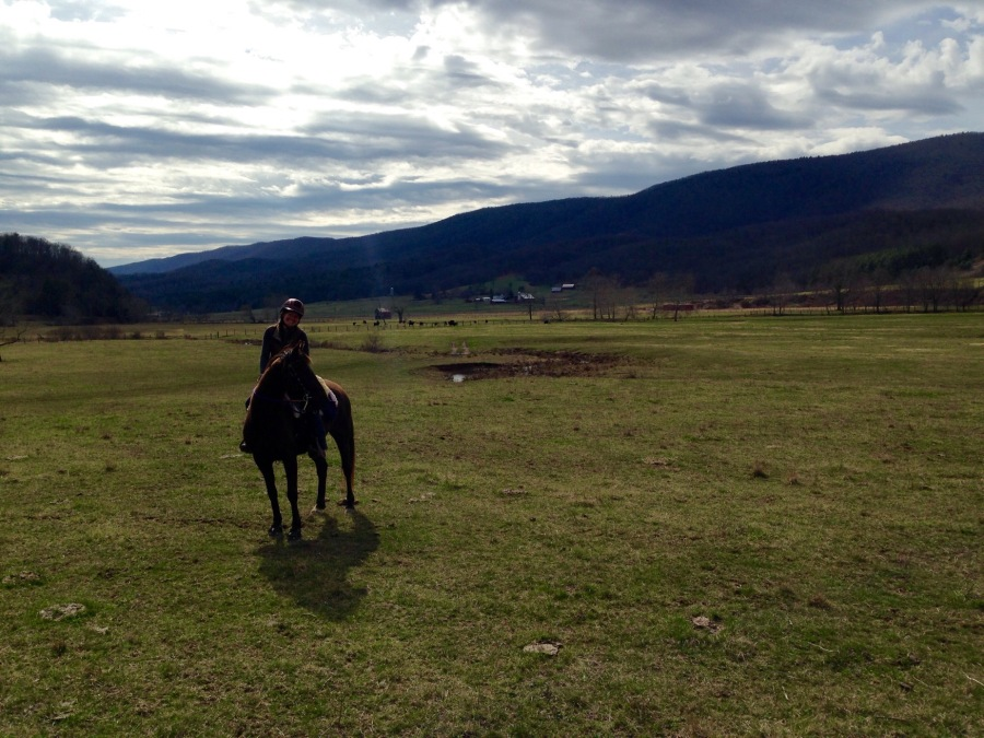 The New Trail and theCanter