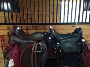 Brown Campbell Saddle and Black (new) Phoenix Rising Saddle next to each other