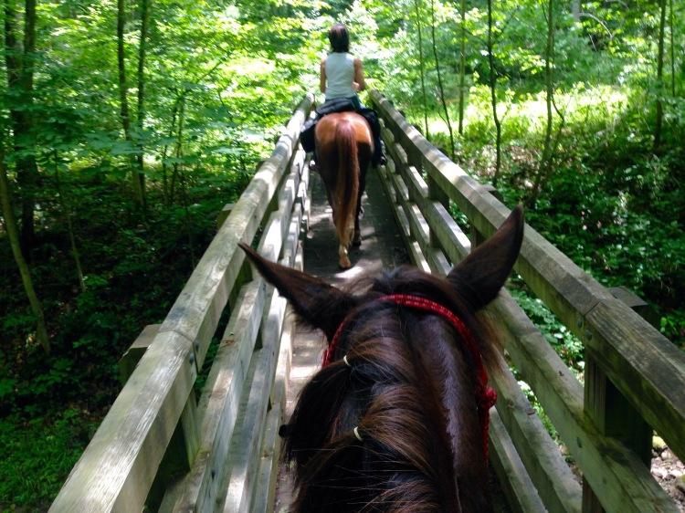 Crossing a narrow bridge