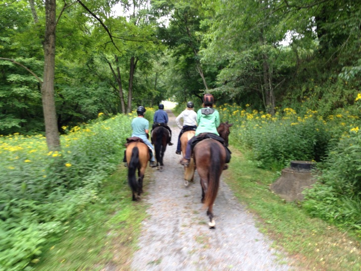 Easy to trot out the last few miles along the Greenbrier river