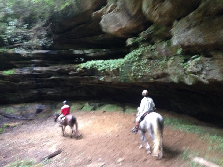 Example of rock formations we rode past- blurry because we were moving!