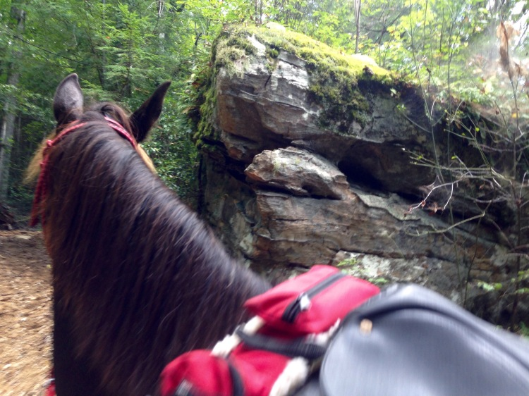 loved all the neat rock formations along the trail