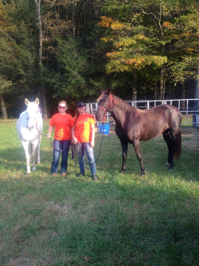 Part 1: Base camp, volunteering, and saddle fit