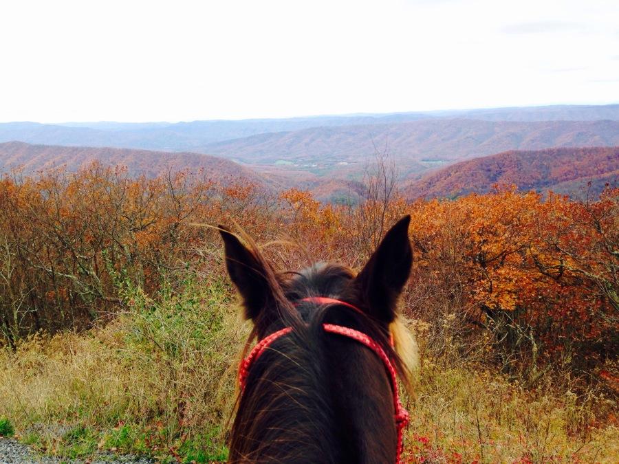 Mountaintop Riding
