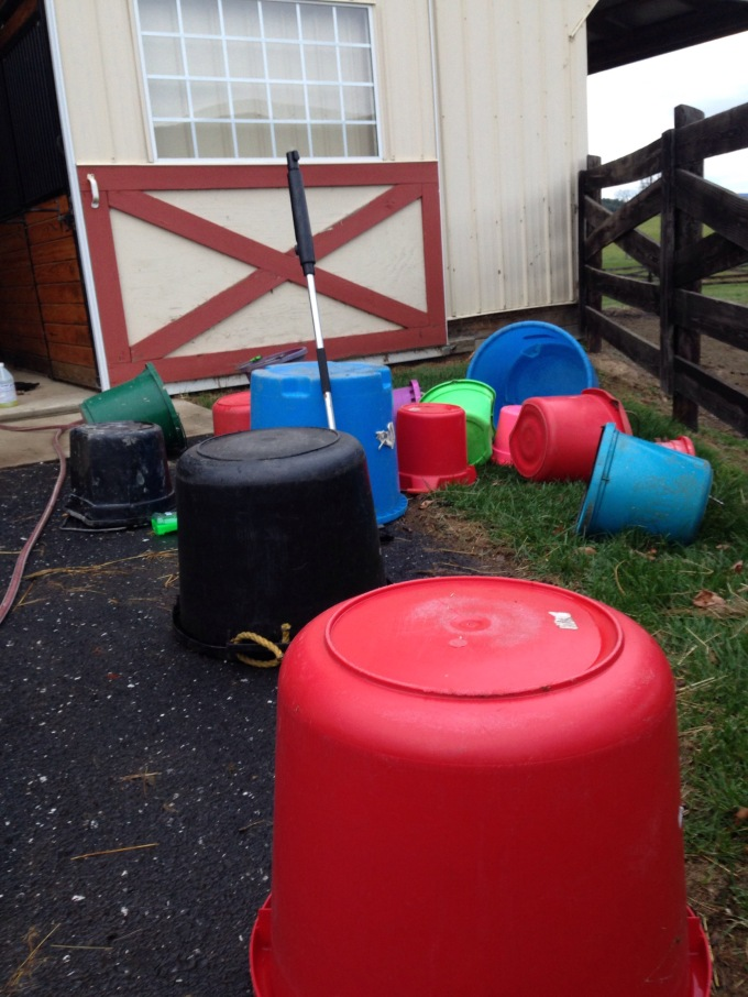 Barn Cleaning weekend! Bucket duty!